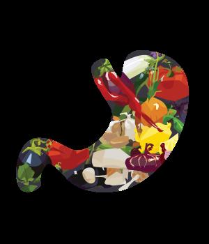 cartoon stomach full of healthy food